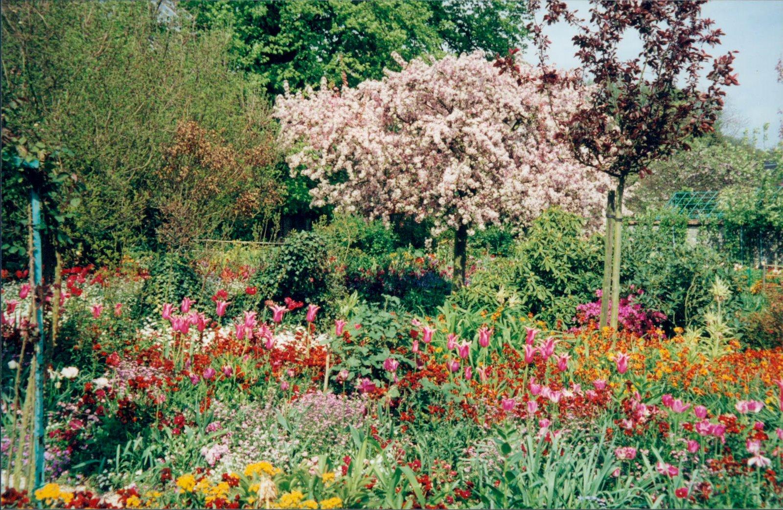Spring blossoms in Monet's garden