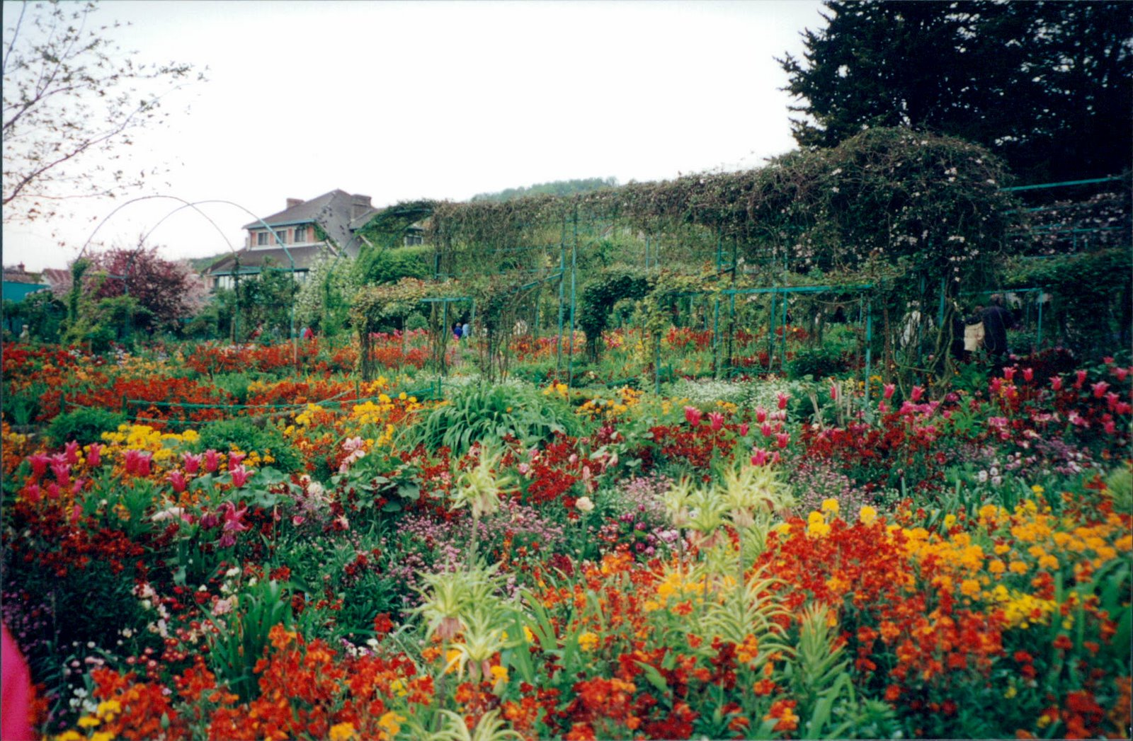 View of Monet's gardens