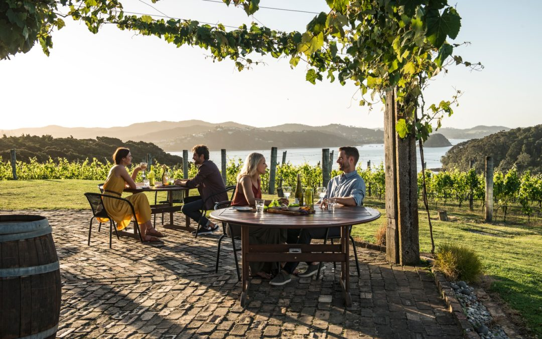 New Zealand: A Guide To Wine Regions
