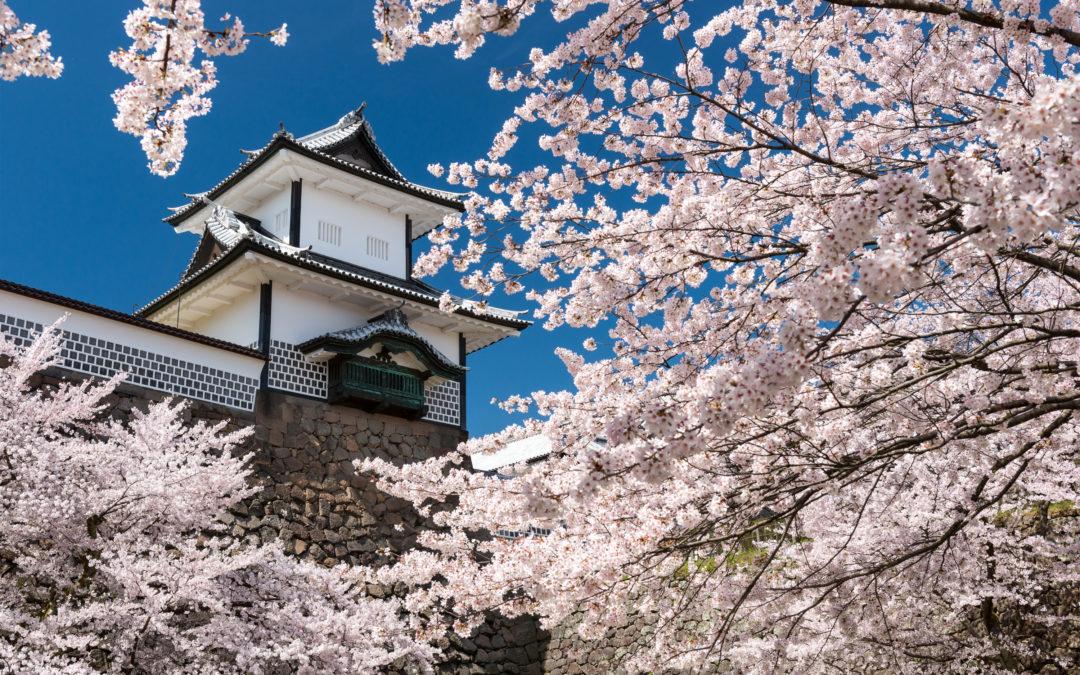 Kanazawa: Geishas, Gardens, Gold & More!